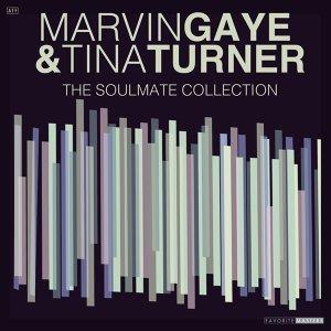 Marvin Gaye, Tina Turner 歌手頭像