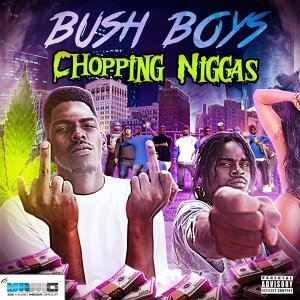 Bush Boys 歌手頭像