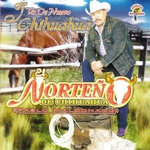 El Norteño De Chihuahua 歌手頭像