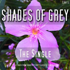 Shades of Grey by M. V. ( From Shades of Grey Classical Compilation ) 歌手頭像
