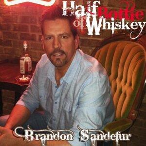 Brandon Sandefur 歌手頭像