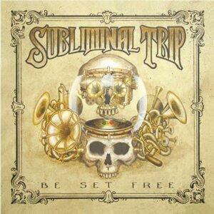 Subliminal Trip