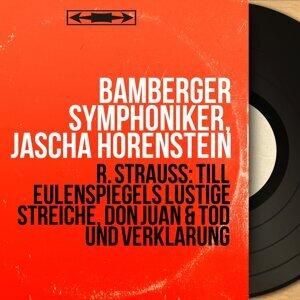 Bamberger Symphoniker, Jascha Horenstein 歌手頭像