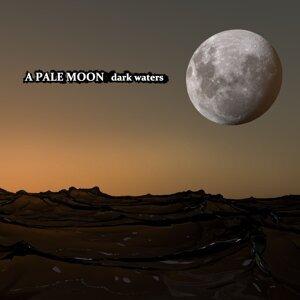 A Pale Moon 歌手頭像
