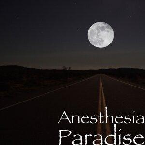 Anesthesia 歌手頭像