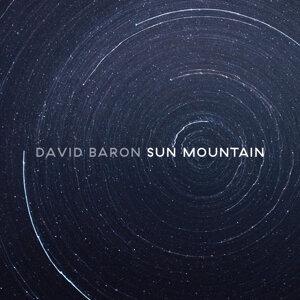 David Baron 歌手頭像