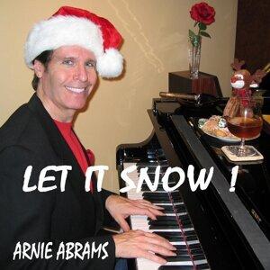 Arnie Abrams 歌手頭像
