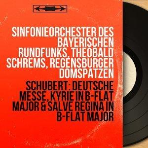 Sinfonieorchester des Bayerischen Rundfunks, Theobald Schrems, Regensburger Domspatzen 歌手頭像