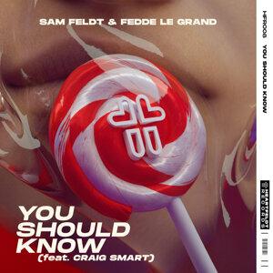 Sam Feldt & Fedde Le Grand