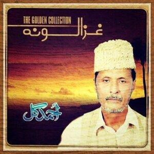 Ahmed Gul 歌手頭像