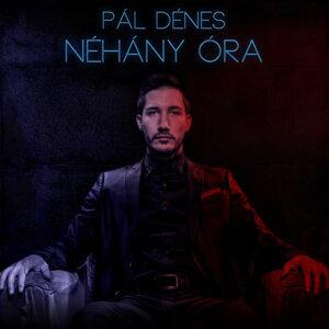 Pál Dénes 歌手頭像