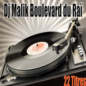 DJ Malik 歌手頭像