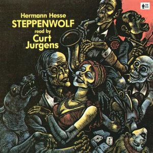 Herman Hesse 歌手頭像