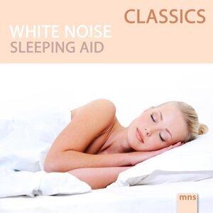 White Noise Classics 歌手頭像