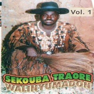 Sekouba Traoré 歌手頭像