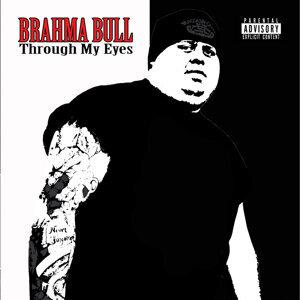 Brahma Bull 歌手頭像