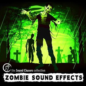 Sound Chaser's Sound Effects 歌手頭像