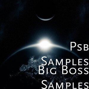 Psb Samples 歌手頭像