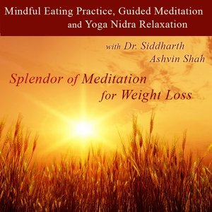 Splendor of Meditation for Weight Loss 歌手頭像
