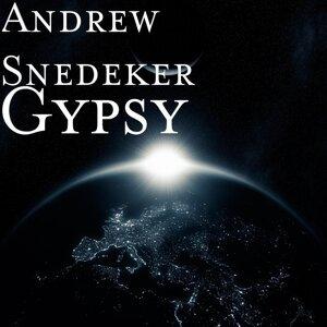 Andrew Snedeker 歌手頭像