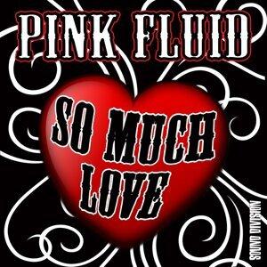 Pink Fluid 歌手頭像