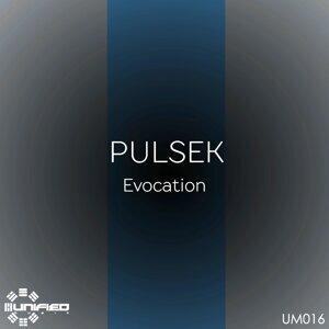 Pulsek 歌手頭像