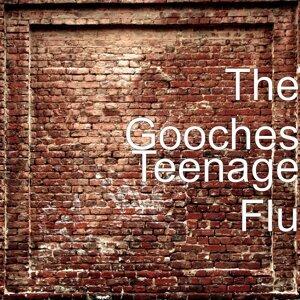 The Gooches 歌手頭像