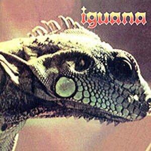 iguana 歌手頭像