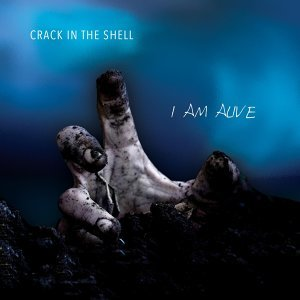 Crack in the Shell 歌手頭像