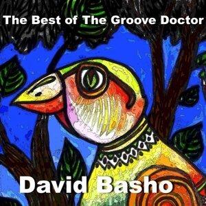 David Basho 歌手頭像