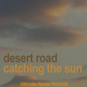 Desert Road 歌手頭像
