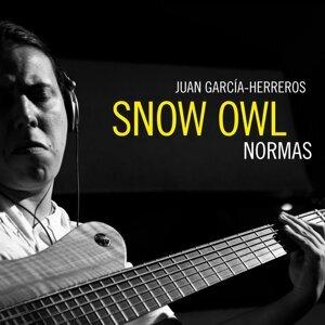 Snow Owl 歌手頭像