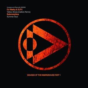 DJ Marky, S.P.Y., Submorphics 歌手頭像