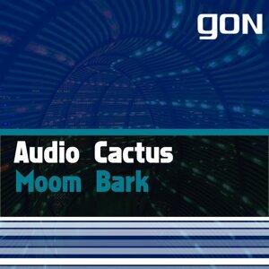 Audio Cactus