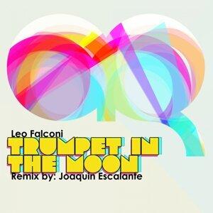 Leo Falconi 歌手頭像