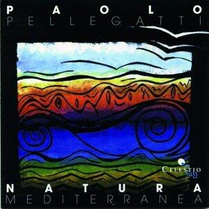 Paolo Pellegatti 歌手頭像