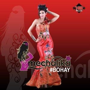 Mechalika 歌手頭像