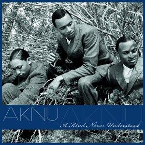 AKNU 歌手頭像
