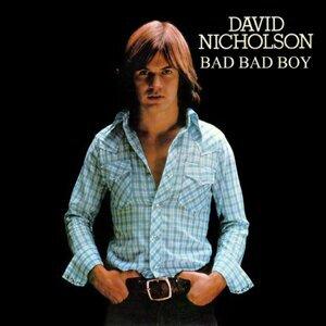 David Nicholson 歌手頭像
