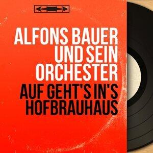 Alfons Bauer und sein Orchester 歌手頭像