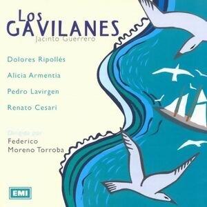 Los Gavilanes 歌手頭像