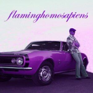 Flaminghomosapiens 歌手頭像