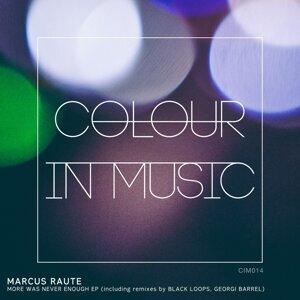 Marcus Raute 歌手頭像