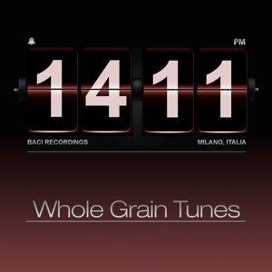 Whole Grain Tunes 歌手頭像