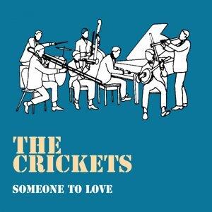 The Crickets 歌手頭像