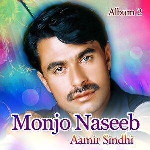 Aamir Sindhi 歌手頭像