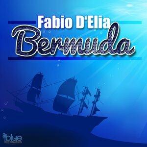 Fabio D'Elia 歌手頭像