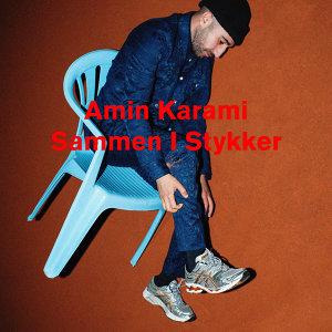 Amin Karami 歌手頭像