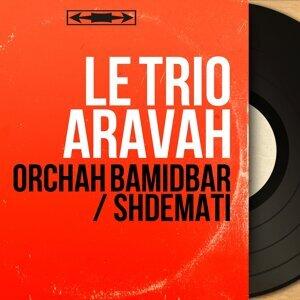 Le Trio Aravah アーティスト写真