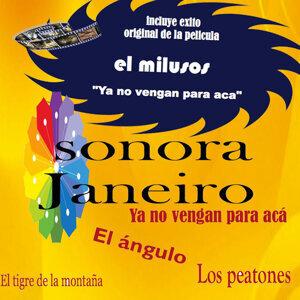 Sonora Janeiro 歌手頭像